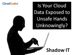 Shadow IT Solutions